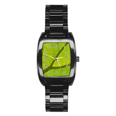 Green Leaf Plant Nature Structure Stainless Steel Barrel Watch
