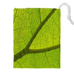 Green Leaf Plant Nature Structure Drawstring Pouches (xxl)