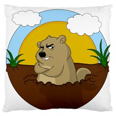 Groundhog Day Standard Flano Cushion Case (one Side)