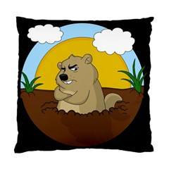 Groundhog Day Standard Cushion Case (two Sides)