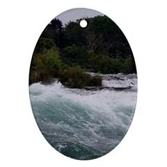 Sightseeing At Niagara Falls Ornament (oval)