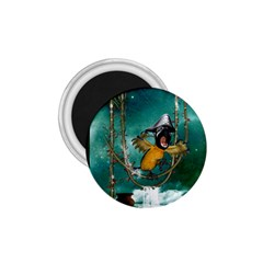 Funny Pirate Parrot With Hat 1 75  Magnets