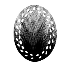 Feather Graphic Design Background Ornament (oval Filigree)