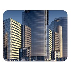 Skyscraper Skyscrapers Building Double Sided Flano Blanket (large)