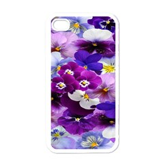 Graphic Background Pansy Easter Apple Iphone 4 Case (white)