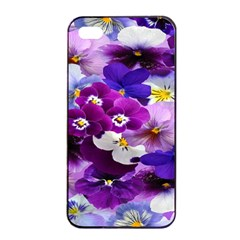 Graphic Background Pansy Easter Apple Iphone 4/4s Seamless Case (black)