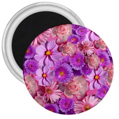 Flowers Blossom Bloom Nature Color 3  Magnets