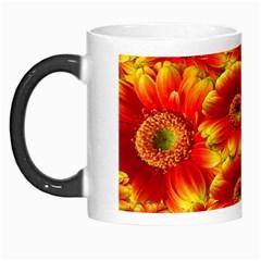 Gerbera Flowers Nature Plant Morph Mugs