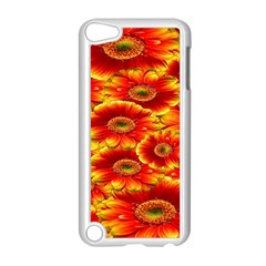 Gerbera Flowers Nature Plant Apple Ipod Touch 5 Case (white)