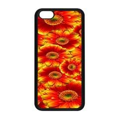 Gerbera Flowers Nature Plant Apple Iphone 5c Seamless Case (black)
