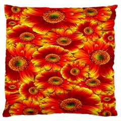 Gerbera Flowers Nature Plant Large Flano Cushion Case (one Side)