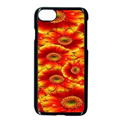 Gerbera Flowers Nature Plant Apple Iphone 8 Seamless Case (black)