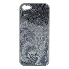 Abstract Art Decoration Design Apple Iphone 5 Case (silver)