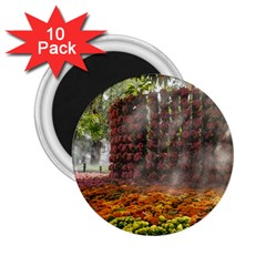 20180115 144003 Hdr 2 25  Magnets (10 Pack)