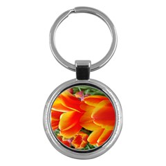 20180115 144714 Hdr Key Chains (round)