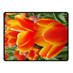 20180115 144714 Hdr Double Sided Fleece Blanket (small)