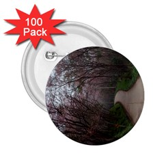 20180111 175704 2 25  Buttons (100 Pack)