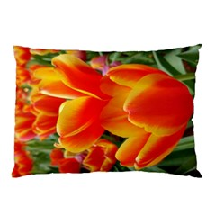 20180115 144714 Hdr Pillow Case (two Sides)