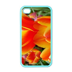 20180115 144714 Hdr Apple Iphone 4 Case (color)