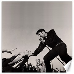 Elvis Presley Canvas 20  X 20