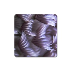 Sea Worm Under Water Abstract Square Magnet