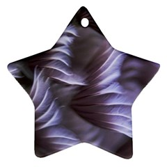 Sea Worm Under Water Abstract Star Ornament (two Sides)