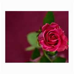 Rose 693152 1920 Small Glasses Cloth (2 Side)