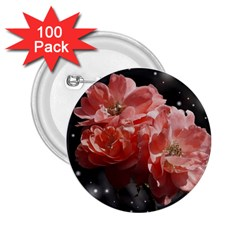 Rose 572757 1920 2 25  Buttons (100 Pack)