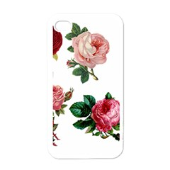 Roses 1770165 1920 Apple Iphone 4 Case (white)