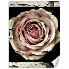 Vintage Rose Canvas 18  X 24
