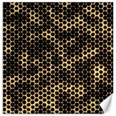 Honeycomb Beehive Nature Canvas 12  X 12