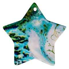 Abstract Art Modern Detail Macro Star Ornament (two Sides)