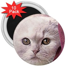 Cat Pet Cute Art Abstract Vintage 3  Magnets (10 Pack)