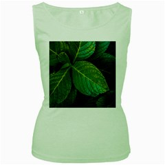 Green Plant Leaf Foliage Nature Women s Green Tank Top