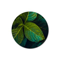 Green Plant Leaf Foliage Nature Rubber Round Coaster (4 Pack)