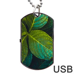Green Plant Leaf Foliage Nature Dog Tag Usb Flash (two Sides)