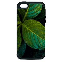 Green Plant Leaf Foliage Nature Apple Iphone 5 Hardshell Case (pc+silicone)