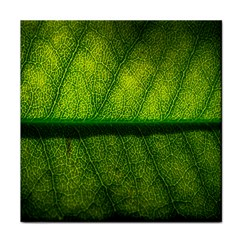 Leaf Nature Green The Leaves Tile Coasters