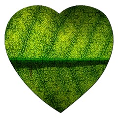 Leaf Nature Green The Leaves Jigsaw Puzzle (heart)
