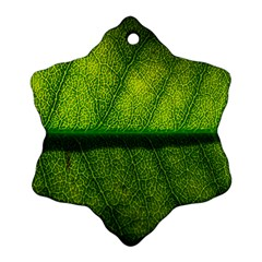 Leaf Nature Green The Leaves Snowflake Ornament (two Sides)