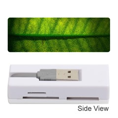 Leaf Nature Green The Leaves Memory Card Reader (stick)