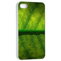 Leaf Nature Green The Leaves Apple Iphone 4/4s Seamless Case (white)