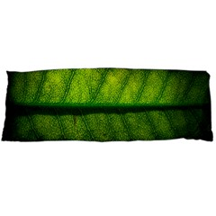 Leaf Nature Green The Leaves Body Pillow Case (dakimakura)