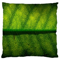 Leaf Nature Green The Leaves Large Cushion Case (one Side)