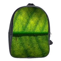 Leaf Nature Green The Leaves School Bag (xl)