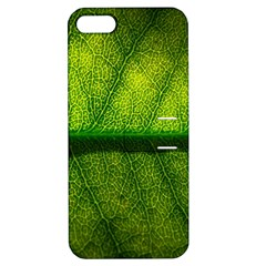 Leaf Nature Green The Leaves Apple Iphone 5 Hardshell Case With Stand