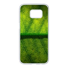 Leaf Nature Green The Leaves Samsung Galaxy S7 Edge White Seamless Case