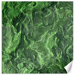Geological Surface Background Canvas 16  X 16
