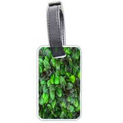 The Leaves Plants Hwalyeob Nature Luggage Tags (one Side)