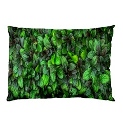 The Leaves Plants Hwalyeob Nature Pillow Case (two Sides)